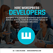 WordPress developer vs. consultant: What all the fuss is about?