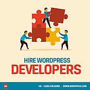 Hire a professional WordPress developer for your business?