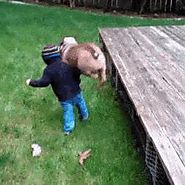 19 More GIFs Of Animals Knocking Out Kids Because It's Time And We Deserve This If you love your animals, set them fr...