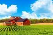 Agcapita Farmland Investment Partnership