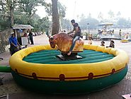Mechanical Bull Ride in India