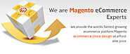Questions to Know : When You Hire Magento Developers