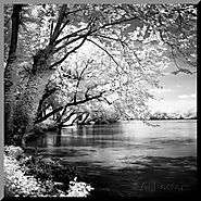 Spring on the River Square Mounted Print