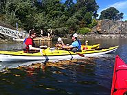 Exploring Victoria's Inner Harbour by Kayak
