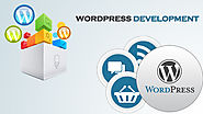 Develop your website with wordpress web development