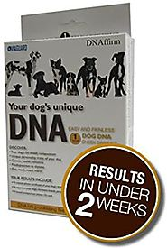 DNA MY Dog Canine Breed Identification Test