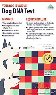 PetConfirm - Dog DNA Test Kit - At-Home Cheek Swab Dog Breed and Personality Traits Identification Test With Laborato...