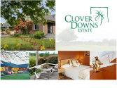Clover Downs Estate