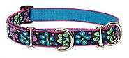 Lupine 1-Inch Flower Power Martingale Combo Collar