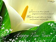Happy New Year Cards | New Year Greeting Cards