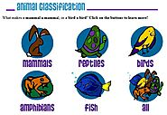Kid's Corner - Main Page on Animal Classification - Mammals, Reptiles, Birds, Amphibians and Fish