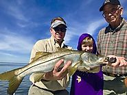 Get Snook Fishing Report in Tampa Bay