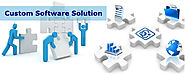 Importance Of Custom Software Solutions For Companies And Businesses