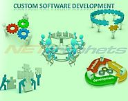The Necessity for Businesses to Opt for Custom Software Development