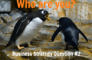 Business Strategy Question #02: Who Are You?