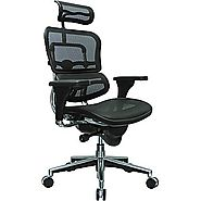Ergohuman High Back Mesh Chair