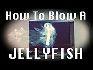 How To Blow A JellyFish