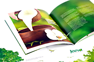 Brochure Printing - Custom Professional Brochure Printing Services