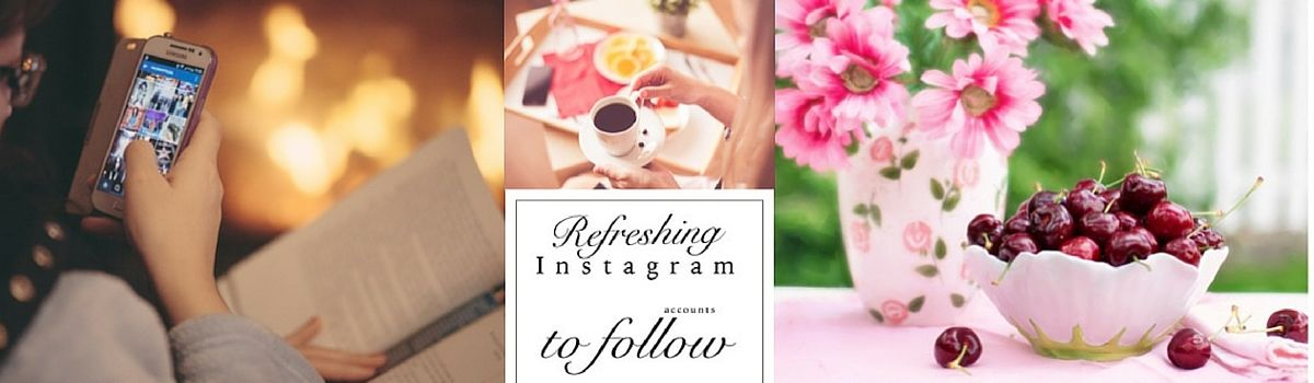 Headline for 15 refreshing Instagram accounts to follow.... specially blended to fill your day with delight