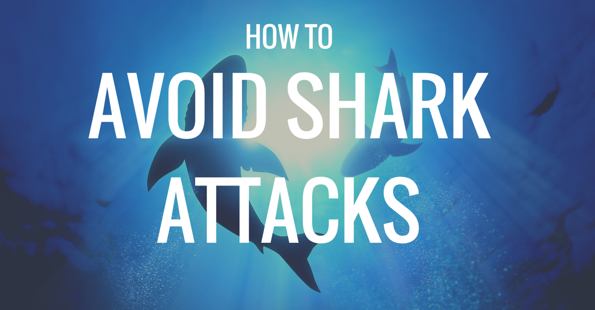 Headline for Videos and articles to help us be better investors and avoid the financial sharks