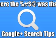 Search tips within Google Plus
