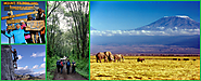 Adventure Trip to The Wildness of Mount Kilimanjaro