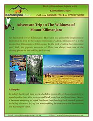 Some Attractive Destinations Like Kilimanjaro Climb