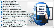 Online Web Research, Data Mining & Data Extraction Services