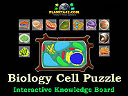 How I learned the Cell Structure with Collectible Biology Games.