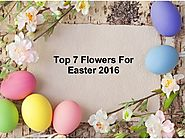 Top 7 flowers for easter 2016