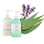 Hand Soap & Lotion Set (Sage/Eucalyptus) ✪