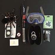 The minimalist game. Day 5. 5 items each 10 total. highlighted item remote control black widow spider.