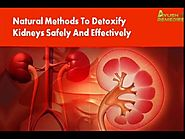 Natural Methods To Detoxify Kidneys Safely And Effectively