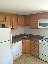 $1100 / 1br - 550ft2 - Modern 1 Bedroom Garden Apt. Downtown, Avail. 6/1 (Park St.)