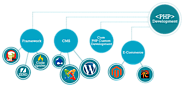 Custom PHP Web Development Company in India