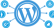Know How Custom WordPress Development Can Be the First Choice for Your Online Business
