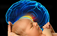 Babies have larger heads because their brains develop more than twice as fast at that age.
