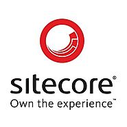 Fulltime Dedicated Certified Sitecore Developers