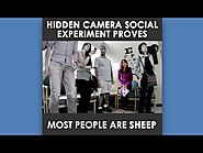 Hidden Camera Social Experiment Proves Most People Are Sheep