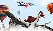 Turkish Airline's #WingoFlies Is The First YouTube 360 Advergame
