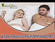 What Are The Reasons For Frequent Semen Leakage In Men?