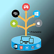 Prismetric- Hybrid App Developer for Cross Platform App Development