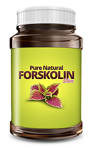 best weight loss supplement|dietary supplement|forskolin extract|weight loss