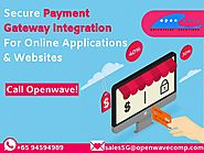 Payment Gateway Providers for E-Commerce Website in Singapore