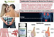 Natural Herbal Treatment for Epididymitis and Symptoms, Causes - Herbal Care Products Blog