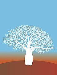 Tree of Life Resource - Catholic Earthcare Australia