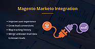 Improve Customer Loyalty with Magento-Marketo Integration | Grazitti Interactive