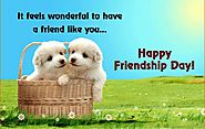 Happy Friendship day 2016 sexy SMS, funny SMS, MMS
