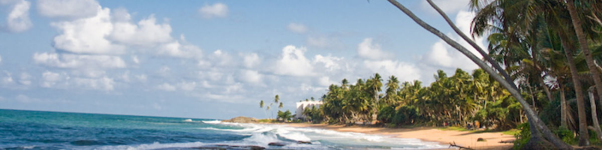 Headline for Best Sightseeing Around Kalutara – Enjoy Diverse Attractions in a Great City
