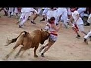 Funny video Of Funny crazy bull fails